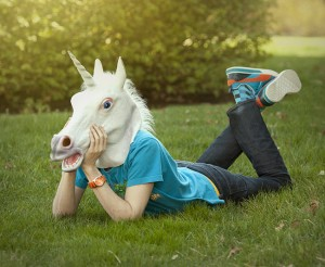 unicorn_head_mask_inuse