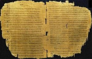 NT_manuscript1