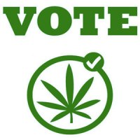 marijuana-vote