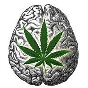 marijuana should be legalized for medical use drug legalization noel merino